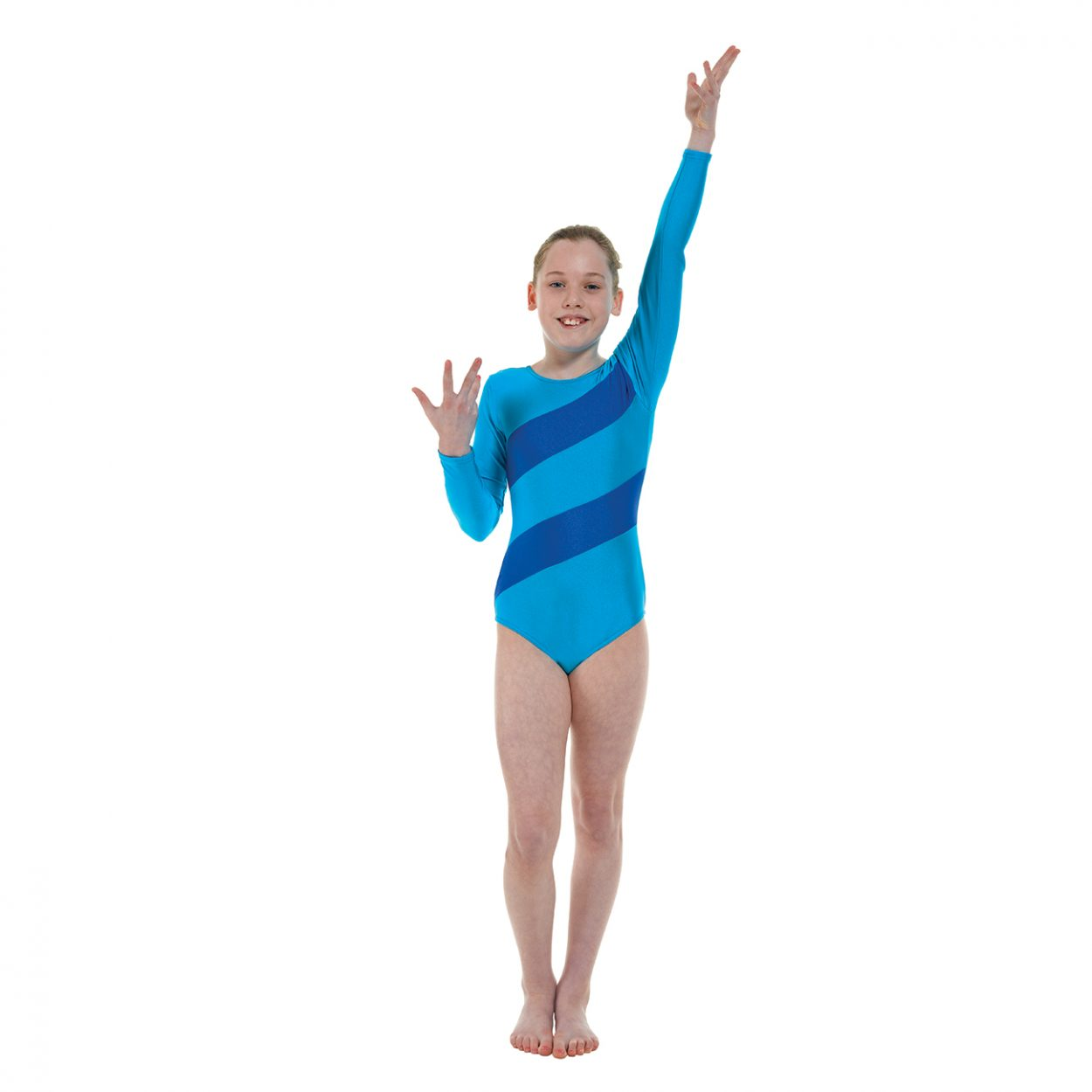 Gym-3-Lycra-Stripes-in-kingfisher Tappers and Pointers
