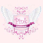 Pink Dancewear